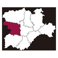 Calibración Zamora